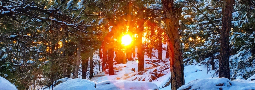 sunrise, snowy sunrise, mountain sun, glow, snow, sunshine, sun through the trees, snow on rocks, snowy trail, winter sunrise