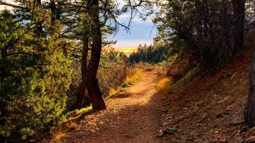 trail, hiking, boulder, colorado, trail running, mesa trail