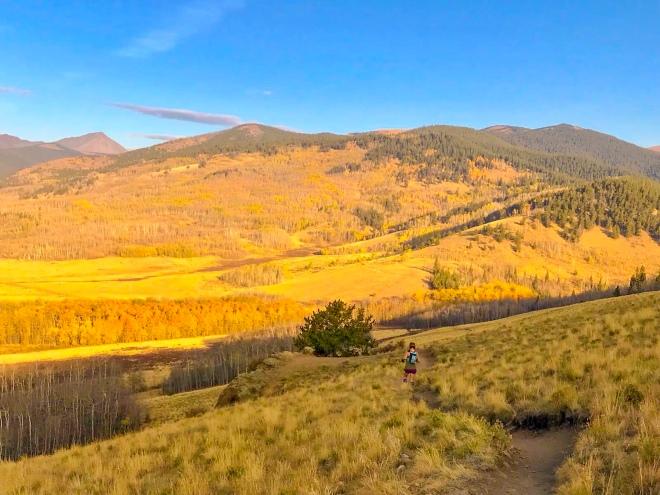 trail running, colorado trail, kenosha pass, fall colors, mountain running, altitude, yellow aspens, changing color, autumn colors, mountains, mountain views